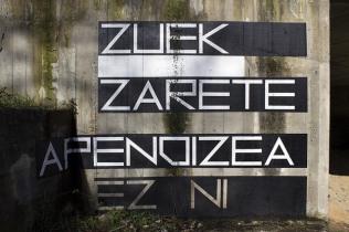 """ZUEK ZARETE APENDIZEA, EZ NI . """"El apéndice son ustedes, no yo"""" dijo"""